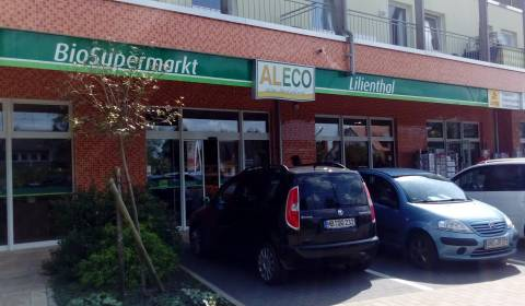 28865 Lilienthal
